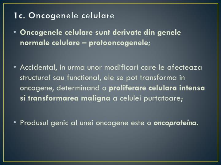 1c. Oncogenele celulare
