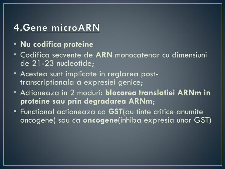 4.Gene microARN