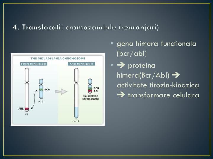 4. Translocatii cromozomiale (rearanjari)