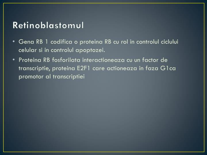 Retinoblastomul