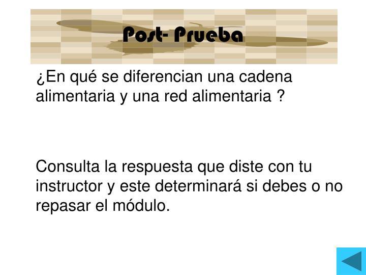 Post- Prueba