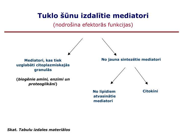 Tuklo šūnu izdalītie mediatori