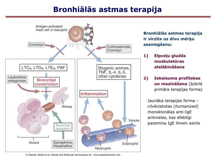 Bronhiālās astmas terapija