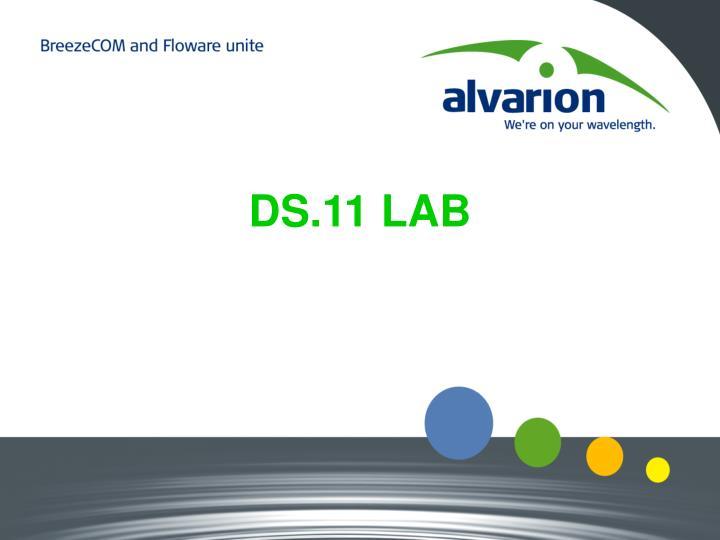 DS.11 LAB