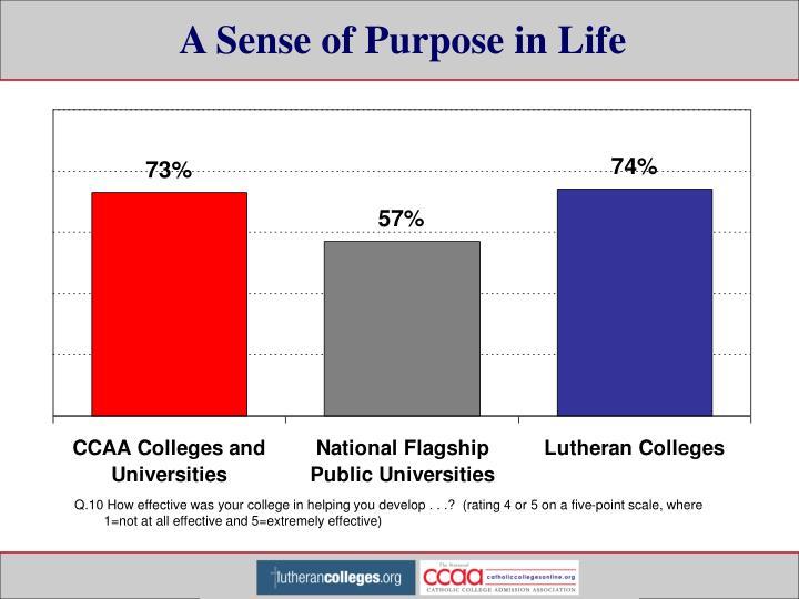 A Sense of Purpose in Life