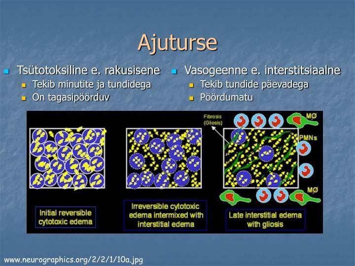 Tsütotoksiline e. rakusisene