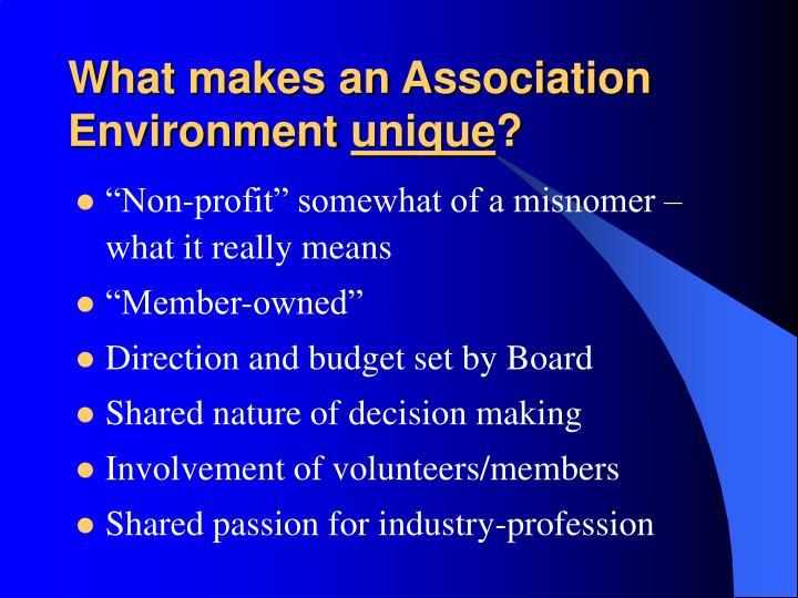 What makes an Association Environment