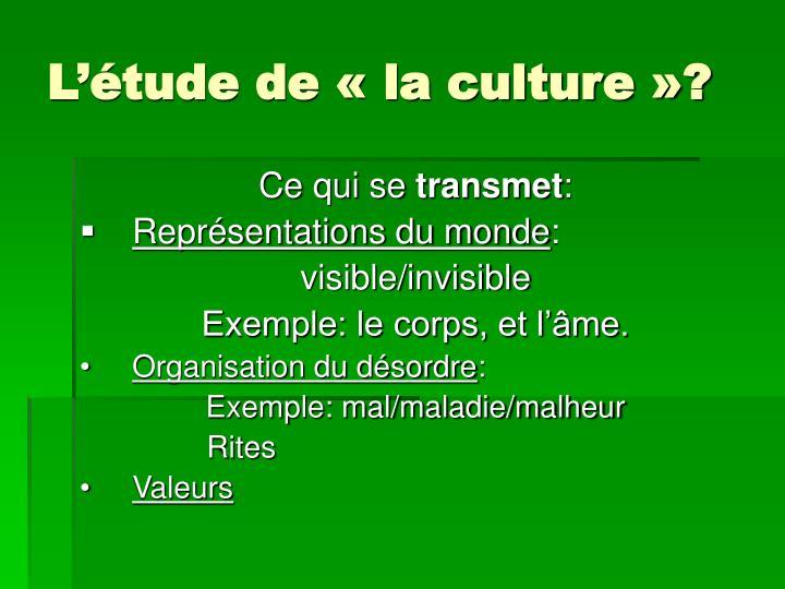 L'étude de « la culture »?