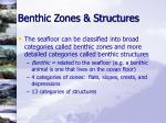 benthic zones structures