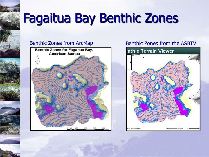 Fagaitua Bay Benthic Zones