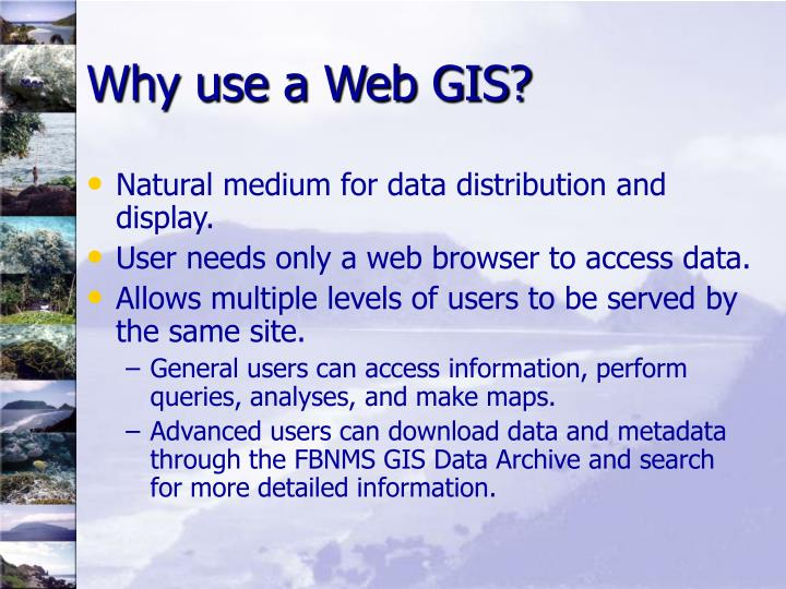 Why use a Web GIS?