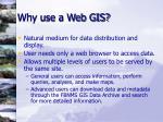 why use a web gis