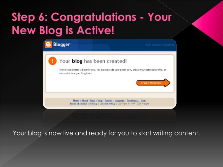 Step 6: Congratulations - Your New Blog is Active!