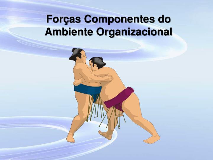 Forças Componentes do Ambiente Organizacional