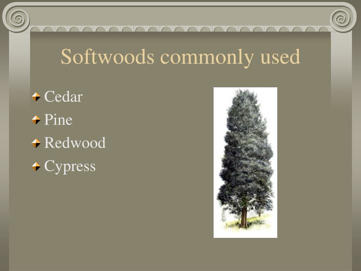 Softwoods commonly used
