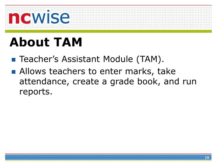 About TAM