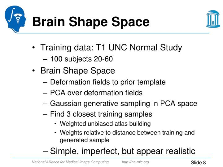 Brain Shape Space