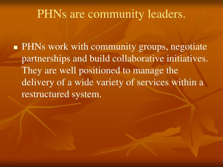 PHNs are community leaders.