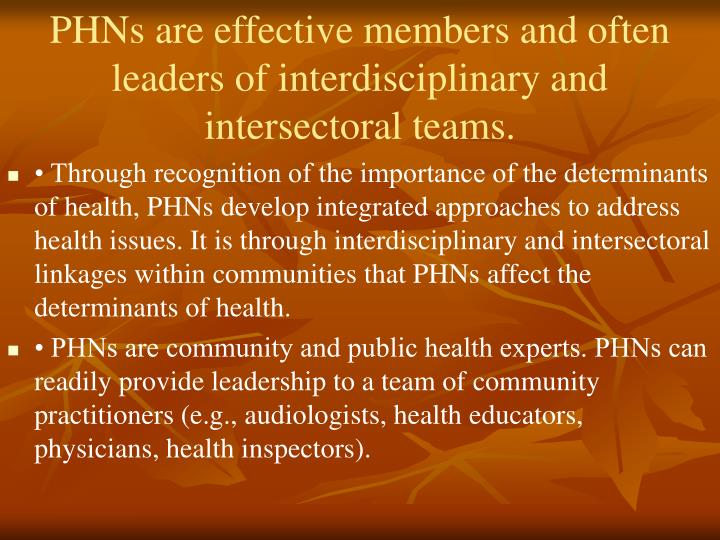 PHNs are effective members and often leaders of interdisciplinary and