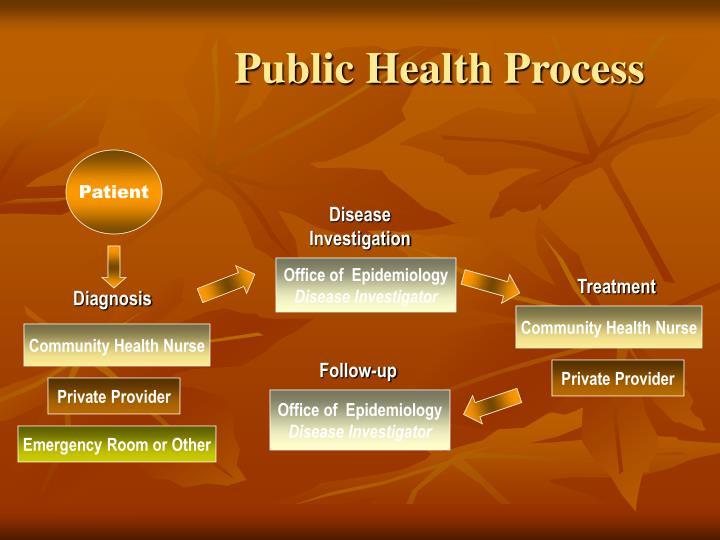 Public Health Process