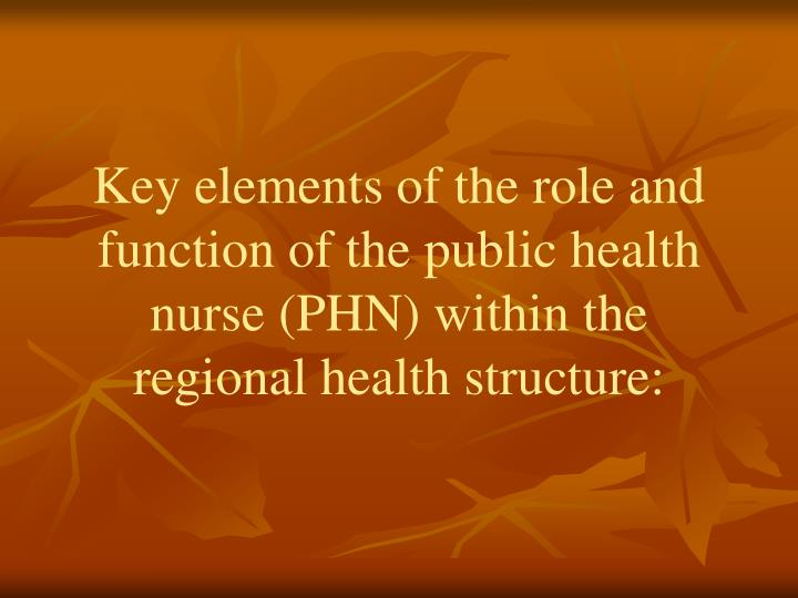 Key elements of the role and function of the public health nurse (PHN) within the