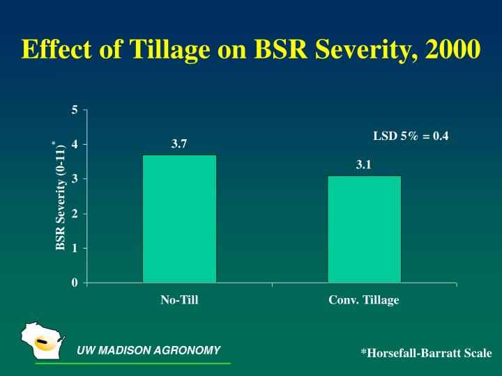 Effect of Tillage on BSR Severity, 2000