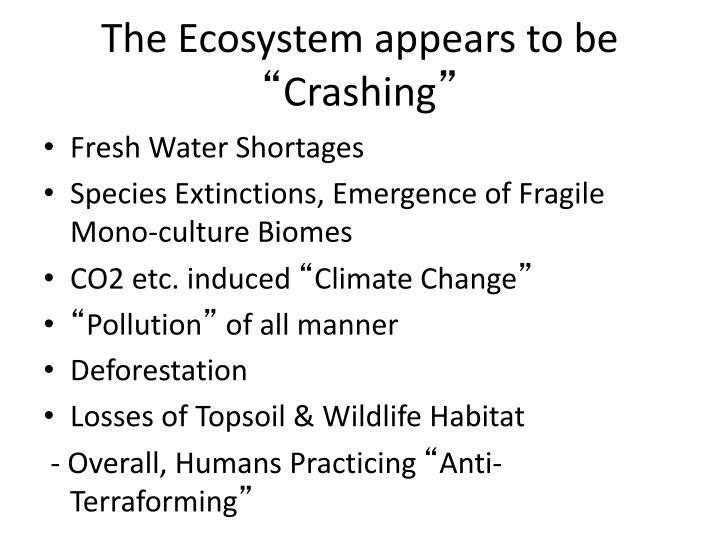 The Ecosystem appears to be