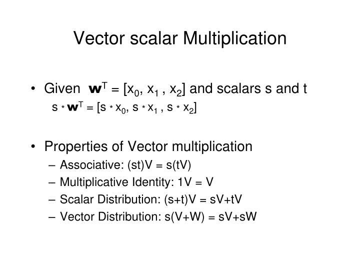 Vector scalar Multiplication
