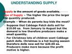 understanding supply