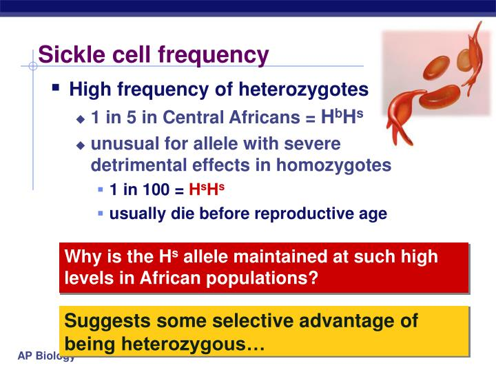 Sickle cell frequency