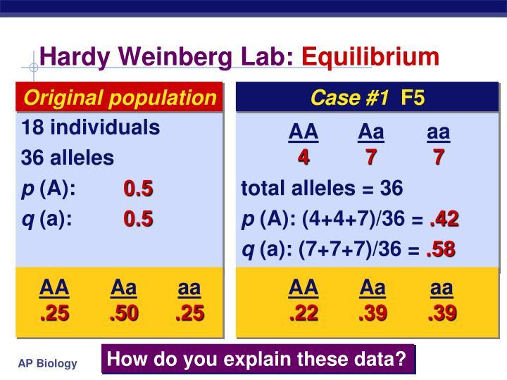 Hardy Weinberg Lab: