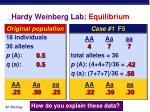 hardy weinberg lab equilibrium