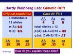 hardy weinberg lab genetic drift
