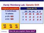 hardy weinberg lab genetic drift3