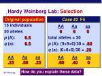 hardy weinberg lab selection