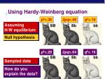 using hardy weinberg equation1