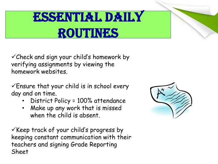 Essential Daily Routines