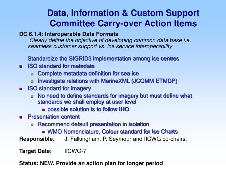 Data, Information & Custom Support Committee Carry-over Action Items