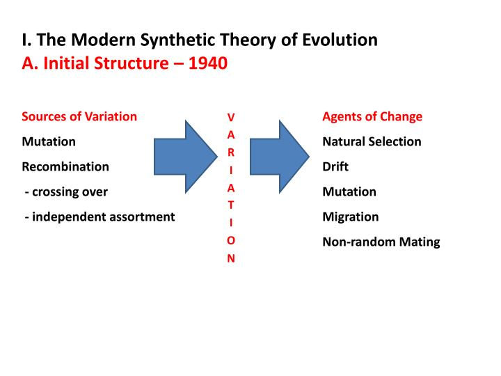 I. The Modern Synthetic Theory of Evolution