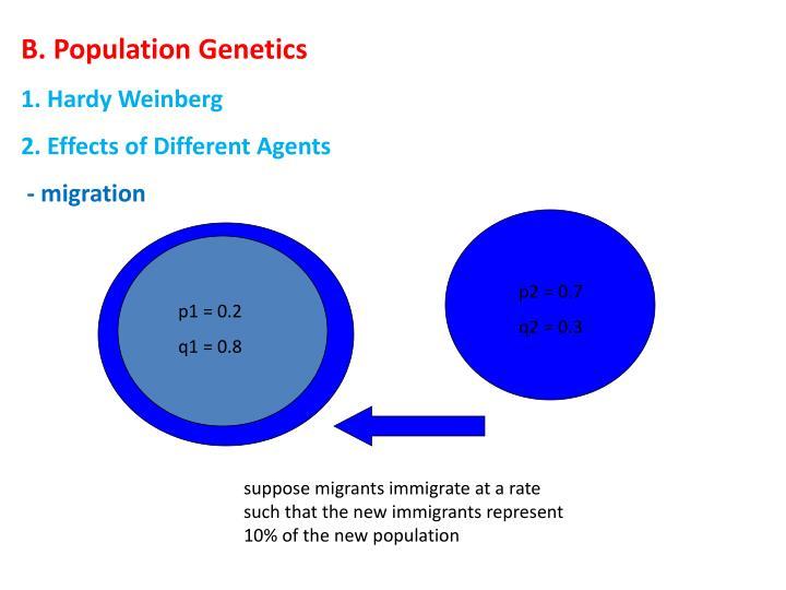 B. Population Genetics