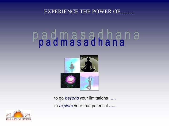EXPERIENCE THE POWER OF……..