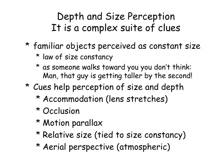Depth and Size Perception