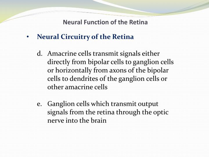 Neural Function of the Retina
