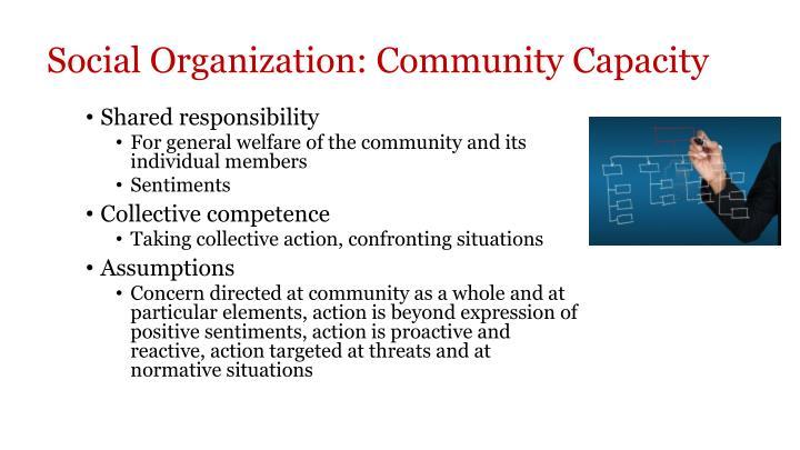 Social Organization: Community Capacity