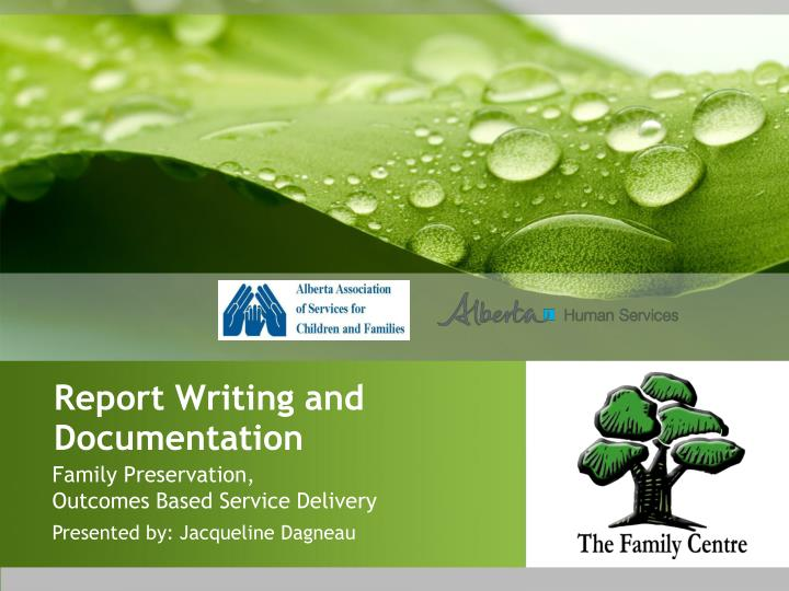 Report Writing and Documentation