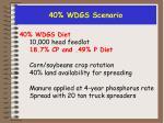 40 wdgs scenario