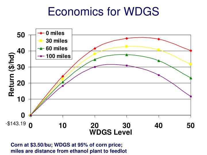 Economics for WDGS