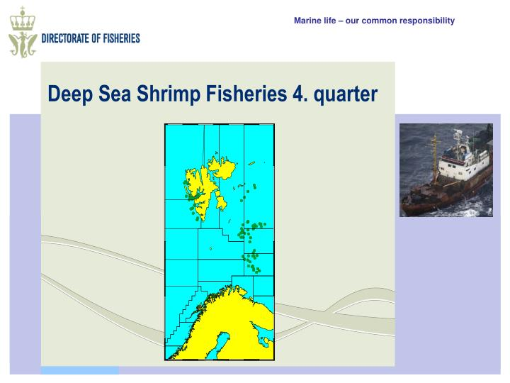 Deep Sea Shrimp Fisheries 4. quarter