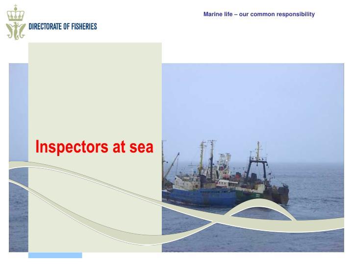 Inspectors at sea