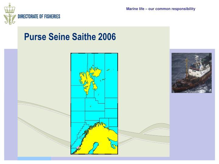 Purse Seine Saithe 2006